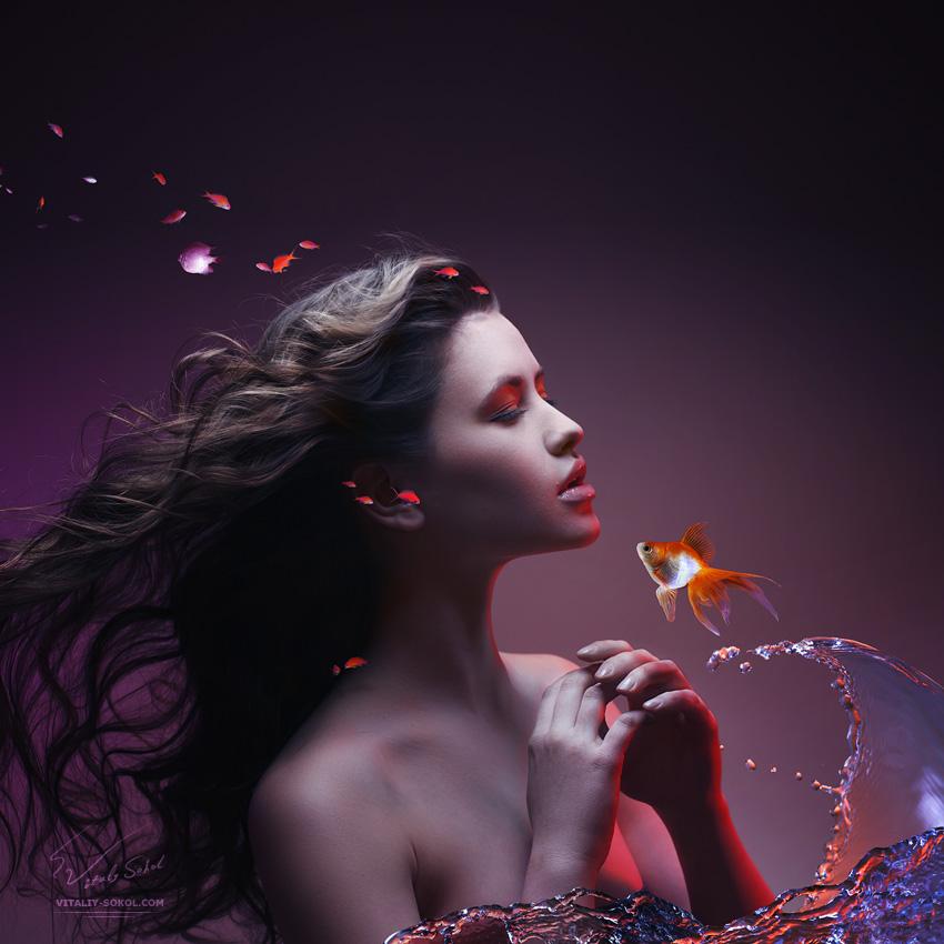 http://vitaliy-sokol.com/wp-content/uploads/imagecache/2012/04/golden-fish-s.jpg