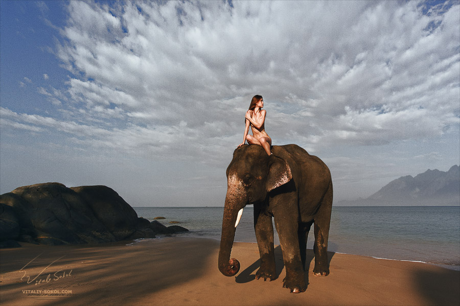 Beautiful naked model riding on elephant by Vitaliy Sokol