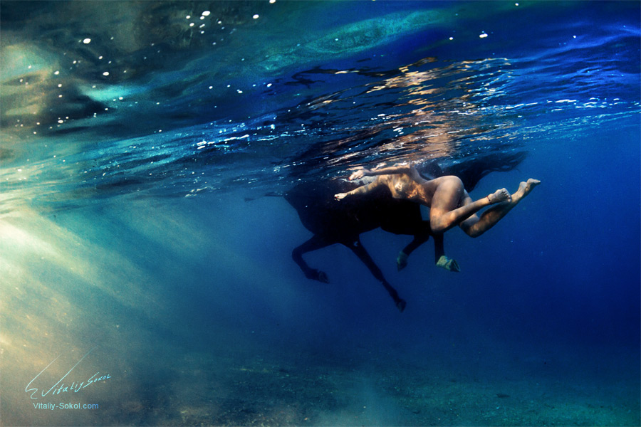 Underwater horse and naked model swimming