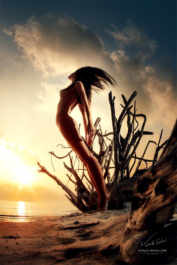 Artistic nude by Vitaliy Sokol