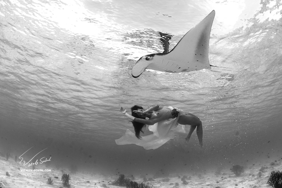 A wild Mantaray floating with beautiful naked model underwater in Indian ocean. Open water freediving at Maldives. Sealife and relationship with wild animals.