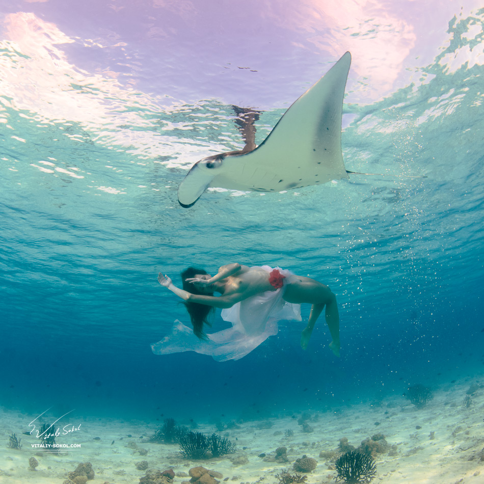 Beautiful naked model and Mantaray in Indian ocean at Maldives
