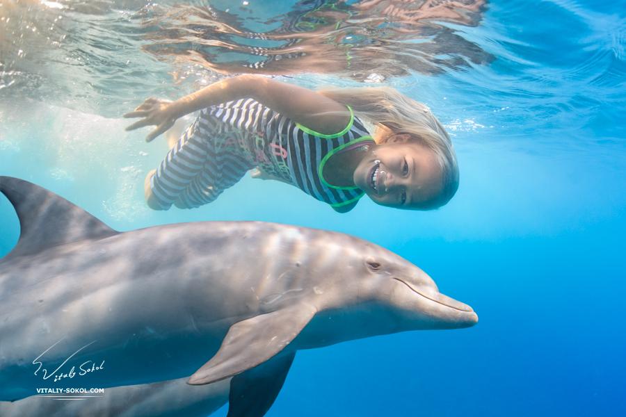 Lilu-dolphins-2N9A6480-3